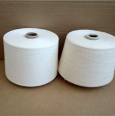 点击查看详细信息<br>标题:纯棉阻燃纱 阅读次数:90