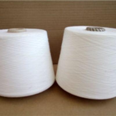 点击查看详细信息<br>标题:涤棉阻燃纱 阅读次数:85
