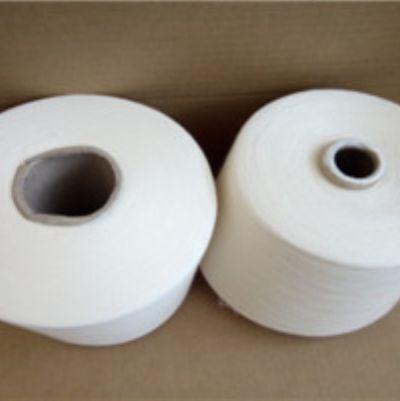 点击查看详细信息<br>标题:有机涤棉纱 阅读次数:314
