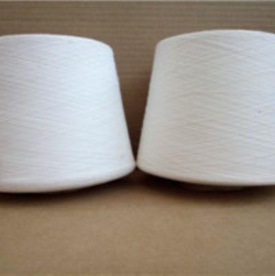 点击查看详细信息<br>标题:环锭纺竹纤维纱 阅读次数:75